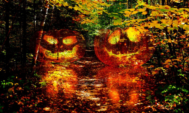 Halloween Scary Wood 1 - stock photos and royalty-free images