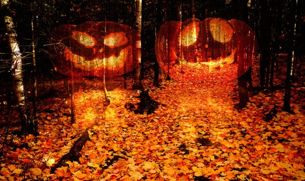 Halloween Scary Wood 2 - stock photos and royalty-free images