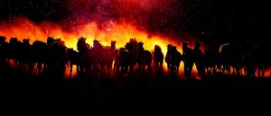Blazing Group Of Horses Running - stock photos and royalty-free images
