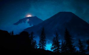 Mystery Woods at Night 01 - stock photos and royalty-free images
