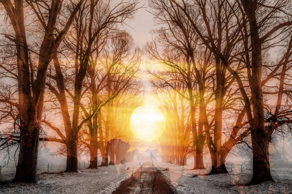 Wintery Road 01 - stock photos and royalty-free images