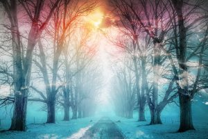 Wintery Road 02 - stock photos and royalty-free images