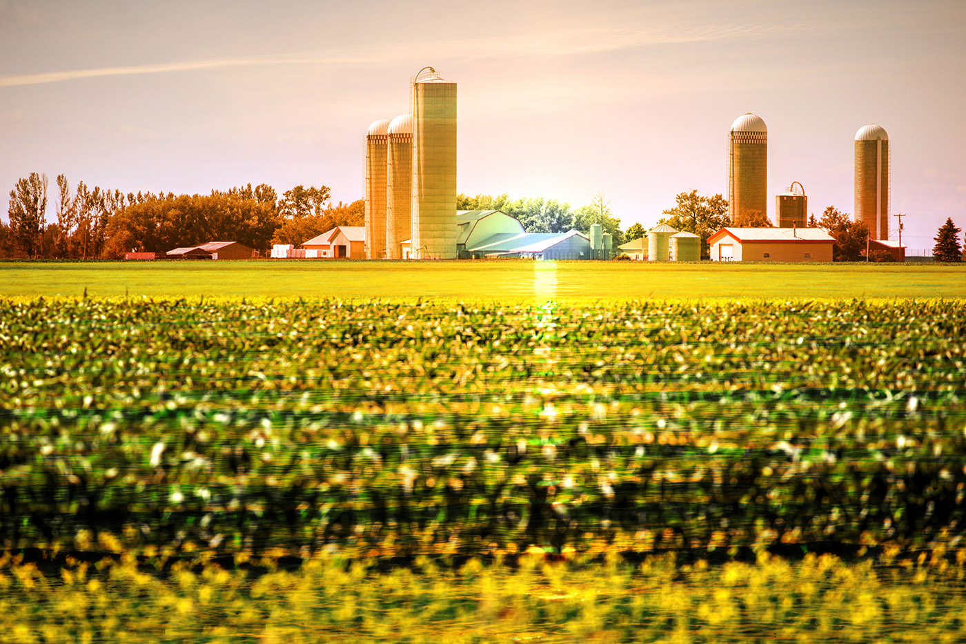 Modern Farmland and Agriculture Real Estate - stock photos and royalty-free images